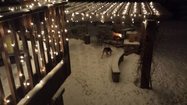 Lighted Pergola in Winter